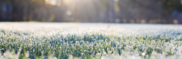 """Погода продолжает """"радовать"""" криворожан: на выходных обещают дожди и снег"""