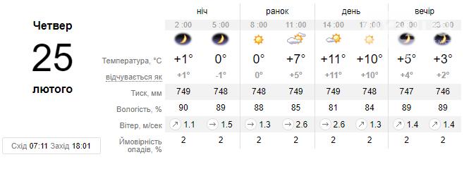 Погода вміє здивувати: незважаючи на туман та ожеледицю, очікується потепління до +11 °С