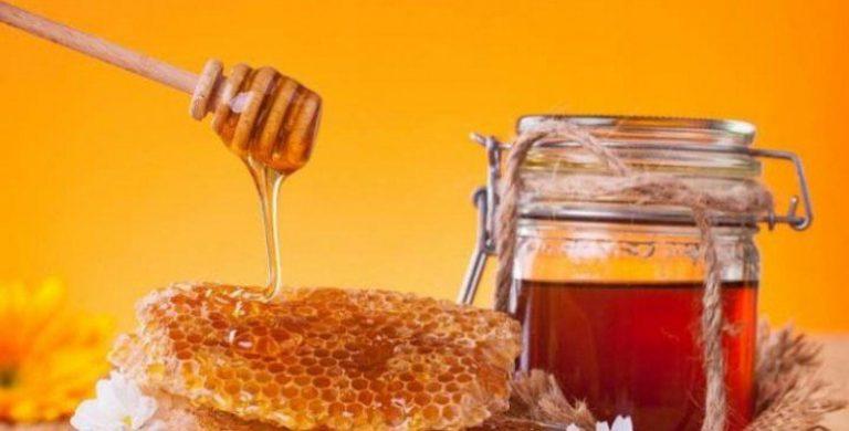 В Винницкой области уничтожили почти три тонны опасного меда