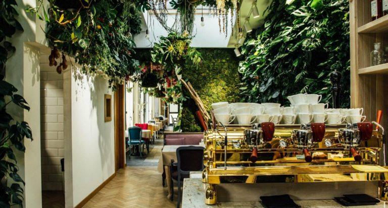 Ресторани Львова: перелік закладів, де можна зробити атмосферні фото