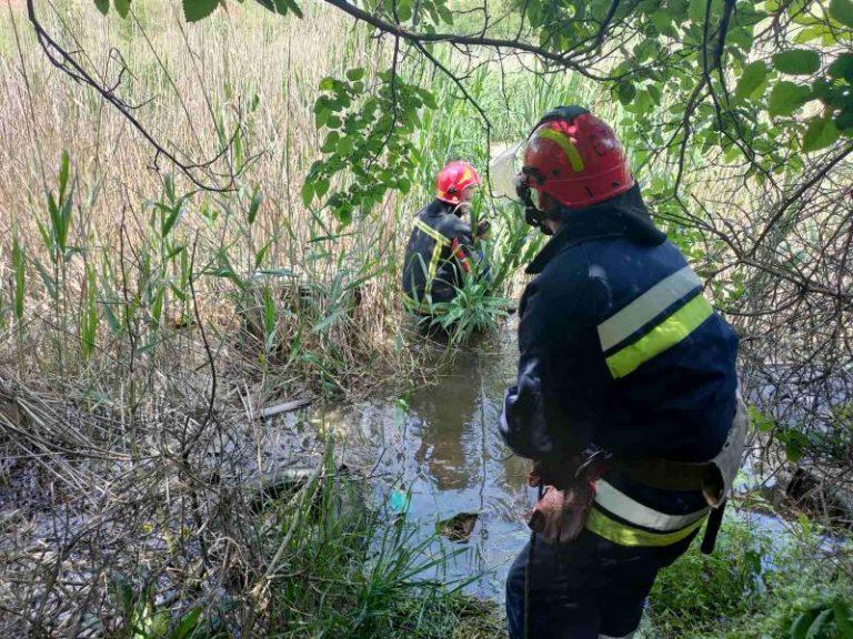 Від початку літа на водоймах України загинуло 23 людини — рятувальники закликають не нехтувати правилами безпеки під час відпочинку! – | Новини Вінниці та області