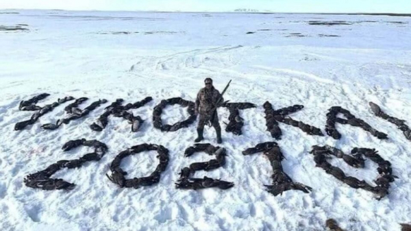 Депутат из партии Путина ради фото убил почти 200 птиц